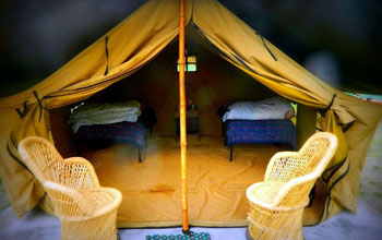 Camp in Rishikesh by Camp Footloose in Rishikesh