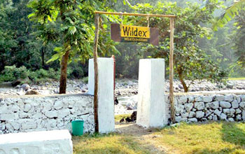 Camp Wildex - Rishikesh