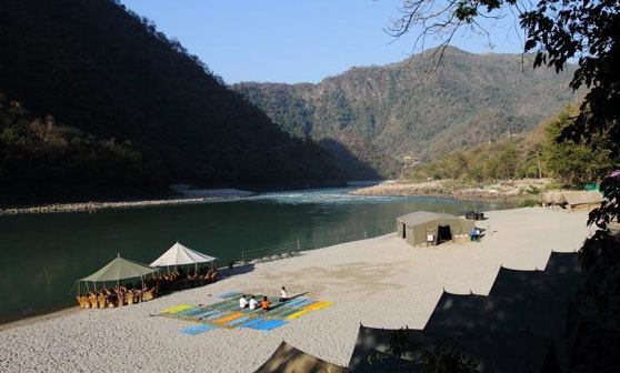 Leopard Beach Tented Camp - Rishikesh