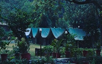 Ravers Beach Camp - Rishikesh