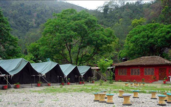 Retreat Jungle - Rishikesh