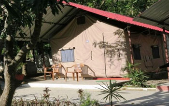 Beach Camp in Rishikesh at Royale Rainbow Resort